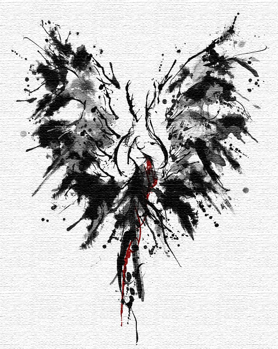 phoenix-1995285_960_720-w_p_black